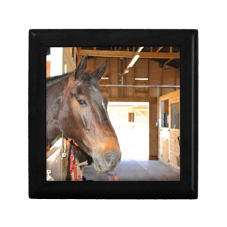 Horse at the stables gift box
