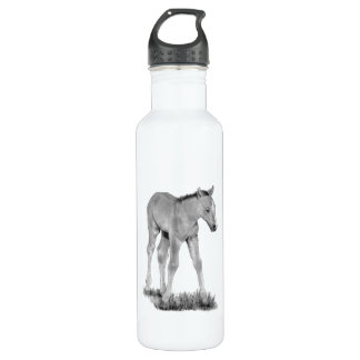 Horse: Baby Colt: Pencil Drawing Stainless Steel Water Bottle