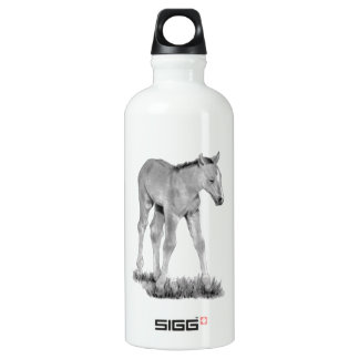 Horse: Baby Colt: Pencil Drawing Water Bottle