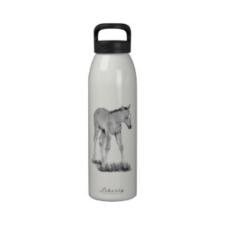 Horse: Baby Colt: Pencil Drawing Drinking Bottle