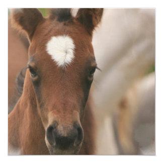 Horse Baby Invitation