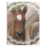 Horse Baby  Notebook