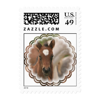 Horse Baby Postage Stamp