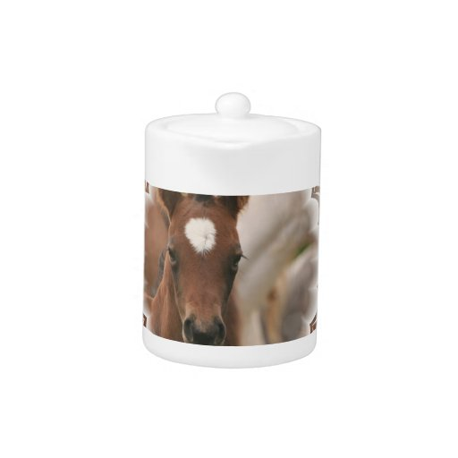 Horse Baby  Teapot