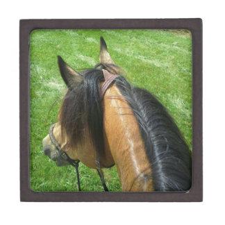 Horse Back Riding Premium Trinket Box