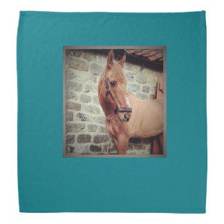 Horse Bandana
