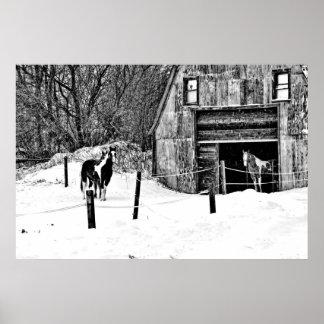Horse-Barn-BW Print