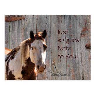 Horse & Barnwood Postcard- cutomize Postcard