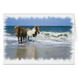 Horse Beach Greeting Card