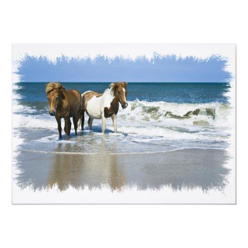 Horse Beach Invitation