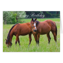 Horse beautiful custom horses birthday card