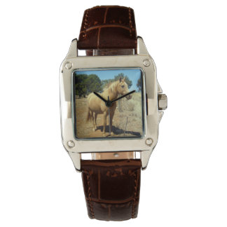Horse-Beauty,(5)_Ladies_Square_Brown_Leather_Watch Wrist Watches
