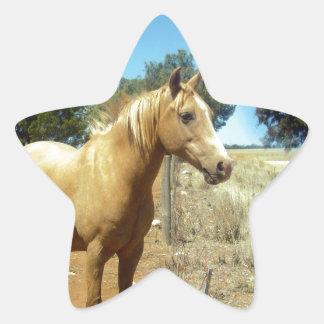 Horse_Beauty,(5),_ Star Sticker