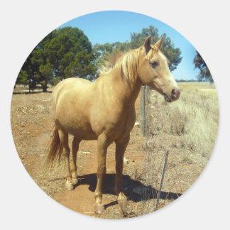 Horse_Beauty,(5),_ Classic Round Sticker