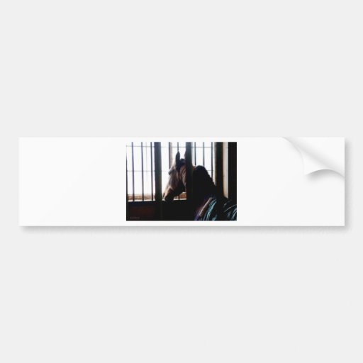 Horse Behind Bars Bumper Stickers