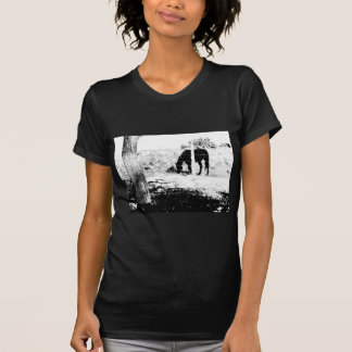 Horse Behind Fencepost in Pen and Ink T-shirt
