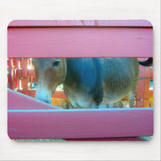 Horse Behind Pink Fence - mousepad
