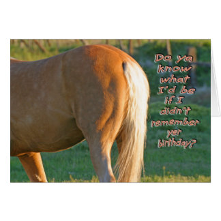 Horse Birthday Card--Funny Men's Card