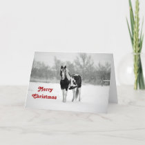 Horse Black and White Snow Photo Christmas Holiday Card