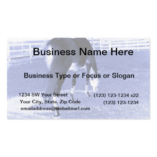 horse blue grazing in equine image business card