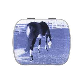 horse blue grazing in equine image candy tin