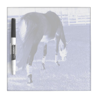 horse blue grazing in equine image Dry-Erase boards