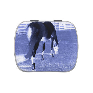 horse blue grazing in equine image jelly belly candy tin