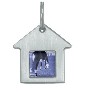 horse blue grazing in equine image pet ID tag