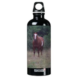 Horse  Bottle SIGG Traveler 0.6L Water Bottle