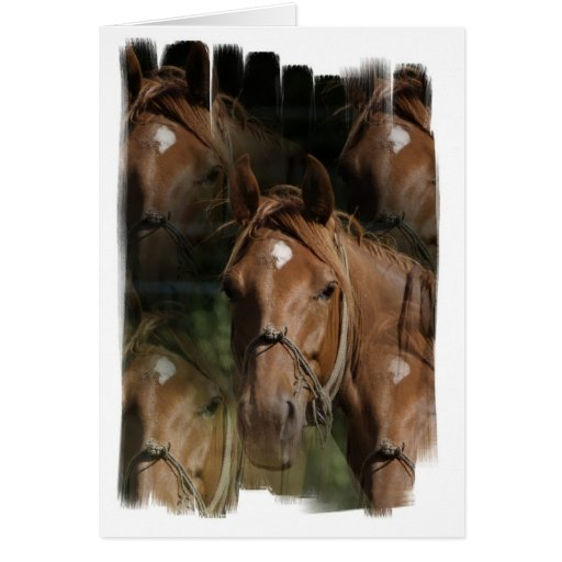Horse Breeds Greeting Card