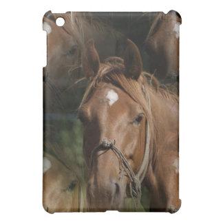 Horse Breeds iPad Case