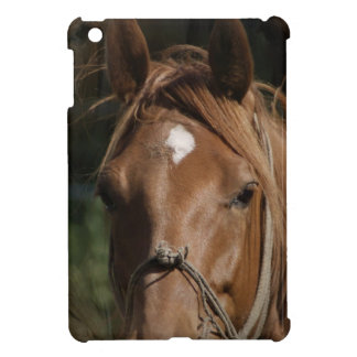 Horse Breeds iPad Mini Cases
