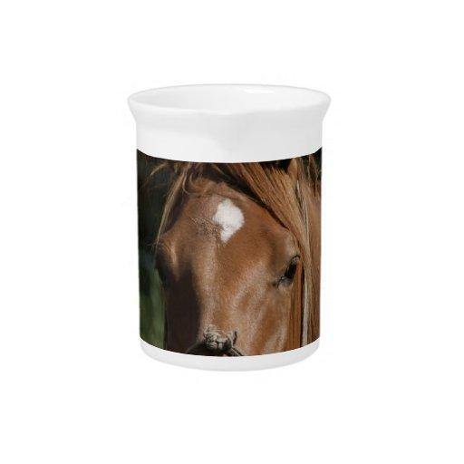 Horse Breeds Pitcher