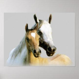 Horse Buddies Poster