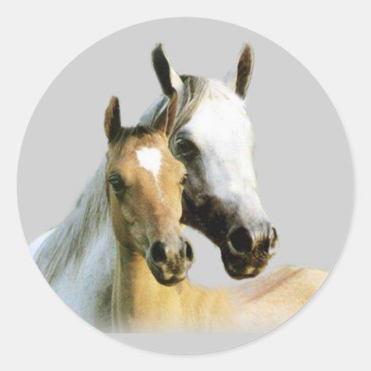 Horse Buddies Sticker