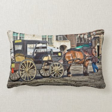 Horse Buggy Taxi, Sights of Amsterdam Pillows