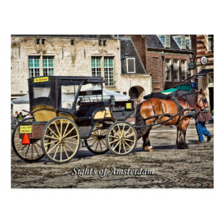 Horse Buggy Taxi, Sights of Amsterdam Postcard