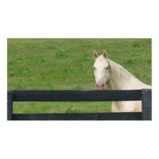 Horse busines card Double-Sided standard business cards (Pack of 100)