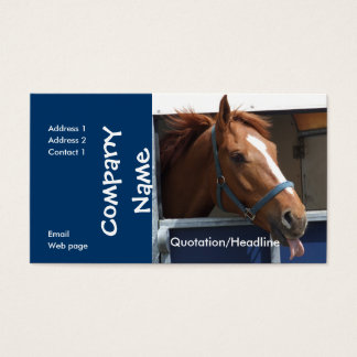 Horse Business Card with 2015 Calender