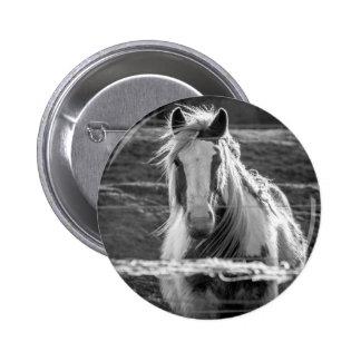 Horse Button Badge