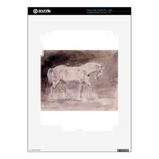 Horse by Eugene Delacroix iPad 2 Skin