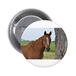 Horse by Tree Buttons