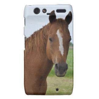 Horse by Tree Motorola Droid RAZR Covers