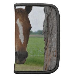Horse by Tree Organizer
