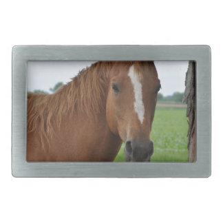Horse by Tree Rectangular Belt Buckles