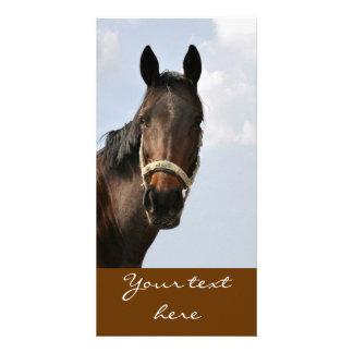 Horse Cards Photo Card