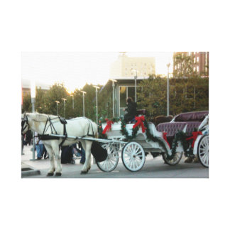 Horse Carriage in Downtown Houston Canvas Print