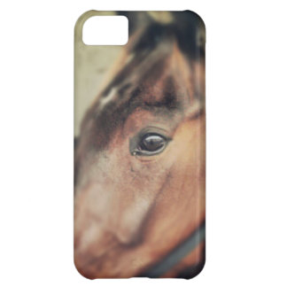 Horse Case For iPhone 5C