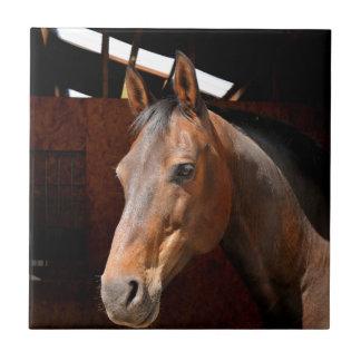 Horse Ceramic Tile