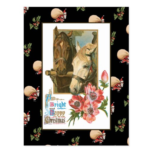 Horse Christmas Postcard